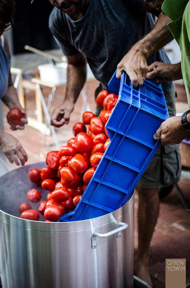 Blanching-Tomatoes-1
