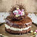 Chocolate Ganache Easter Egg Nest Cake